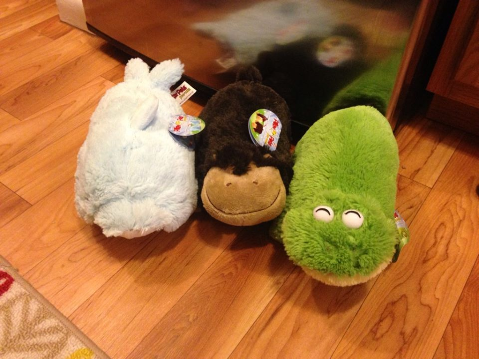 Hot Rite Aid Clearance 75 Off Pillow Pets Seat Pets