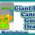 ge canned goods
